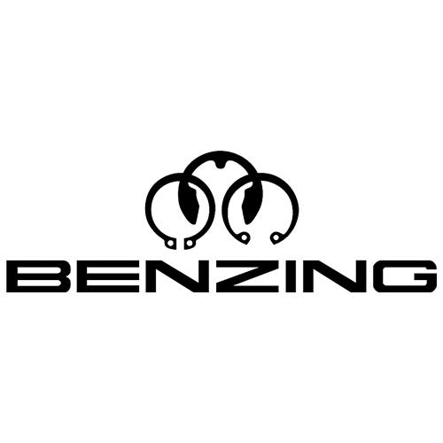 Logo BENZING